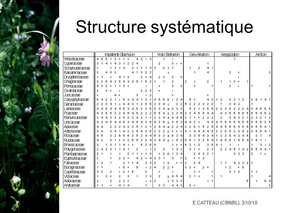 Structure systématique