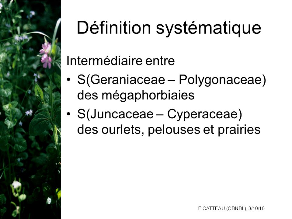 Définition systématique