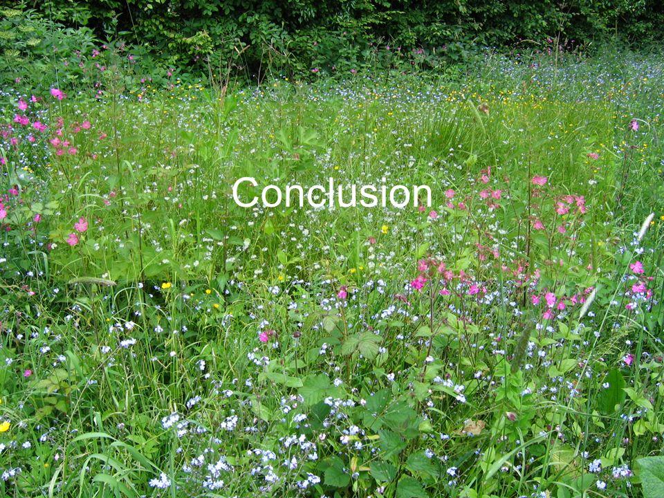 Conclusion E.CATTEAU (CBNBL), 3/10/10