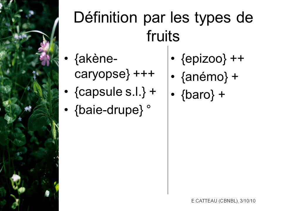 Définition par les types de fruits
