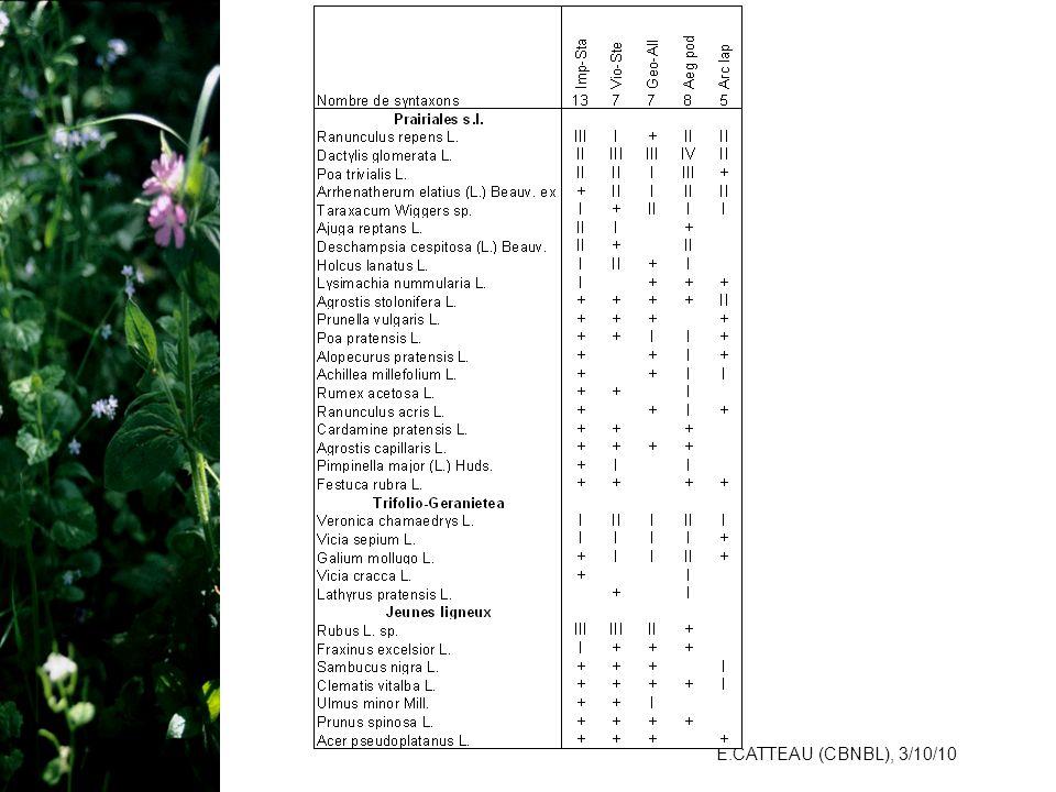 E.CATTEAU (CBNBL), 3/10/10