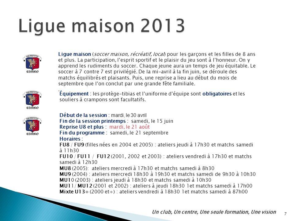 Ligue maison 2013