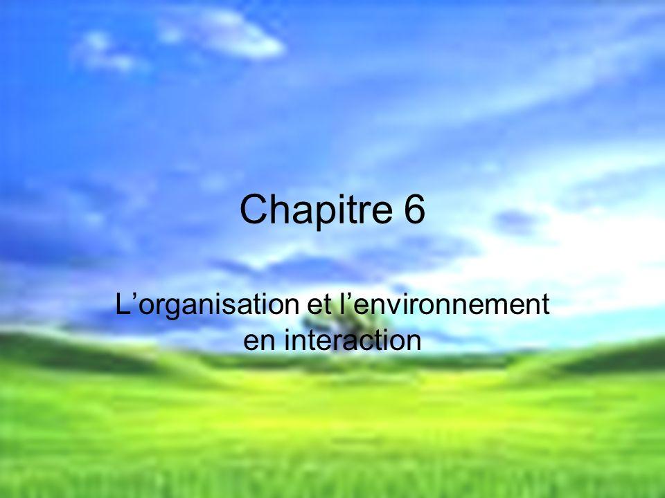 L'organisation et l'environnement en interaction