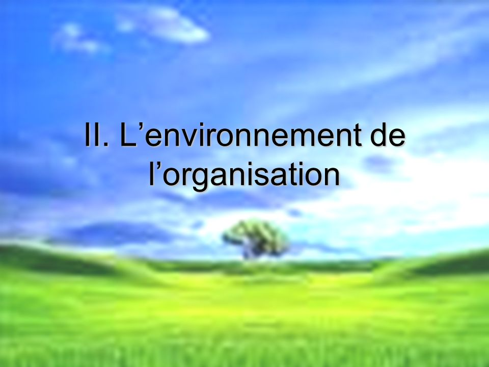 II. L'environnement de l'organisation