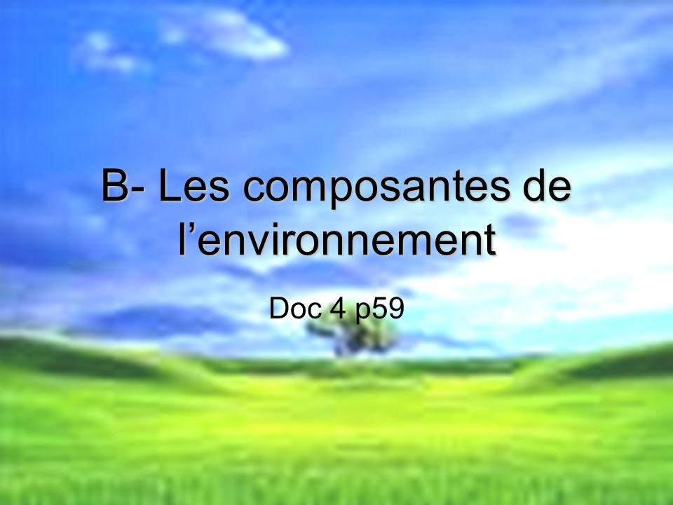 B- Les composantes de l'environnement