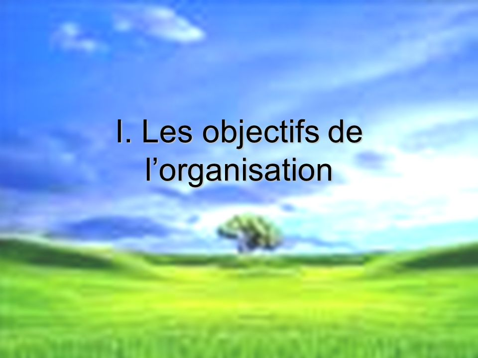I. Les objectifs de l'organisation