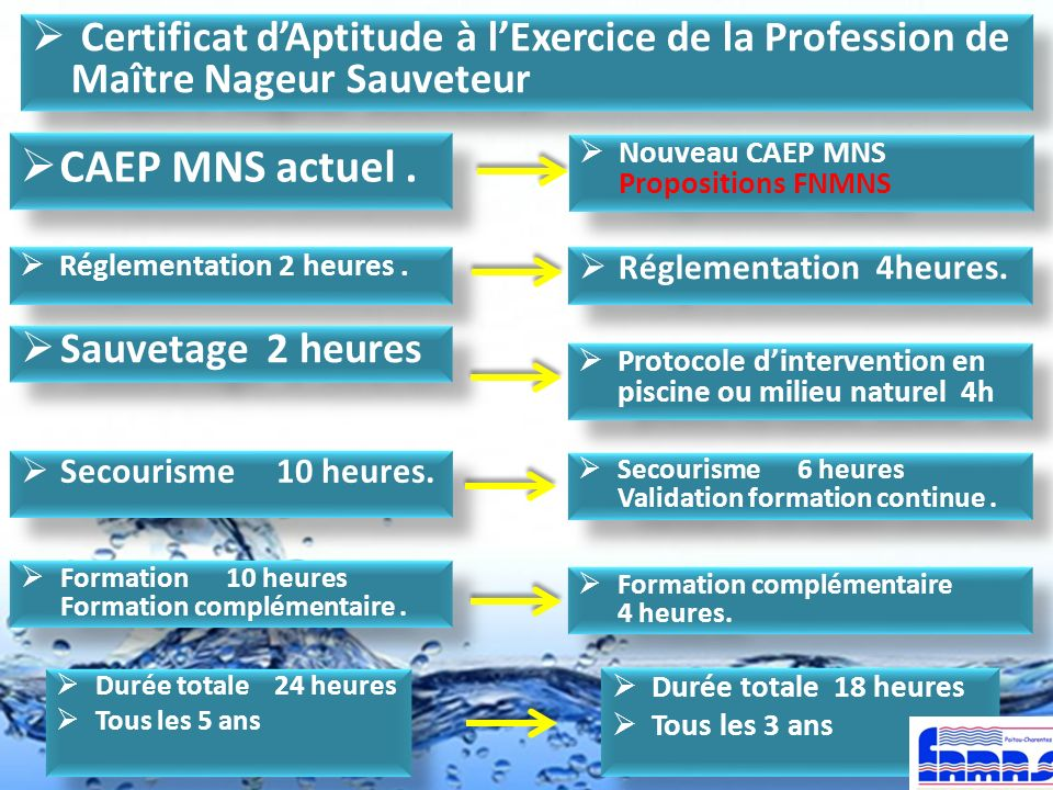 Certificat d'Aptitude à l'Exercice de la Profession de Maître Nageur Sauveteur