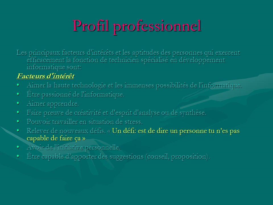 Profil professionnel