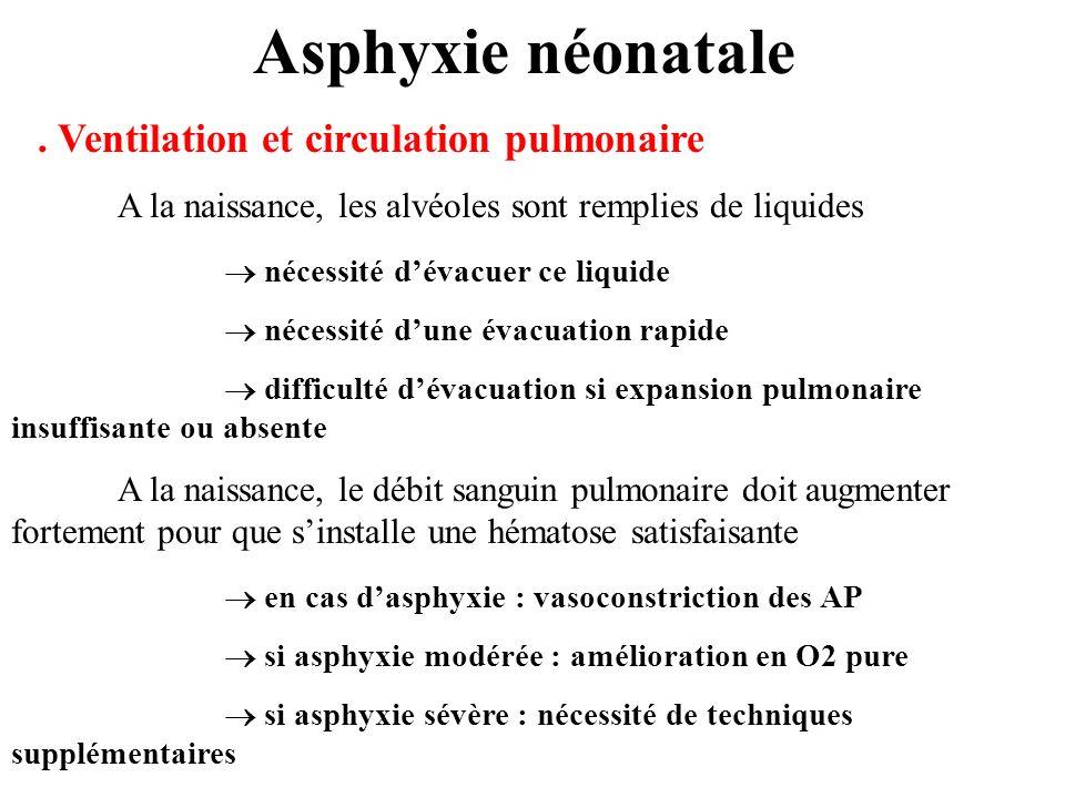 Asphyxie néonatale . Ventilation et circulation pulmonaire