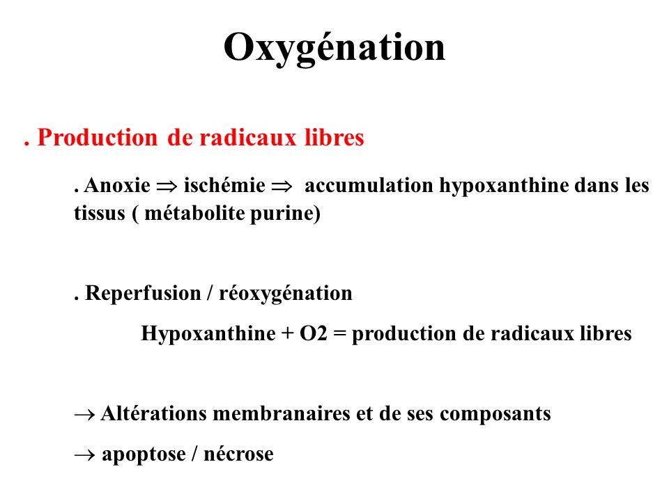 Oxygénation . Production de radicaux libres. . Anoxie  ischémie  accumulation hypoxanthine dans les tissus ( métabolite purine)