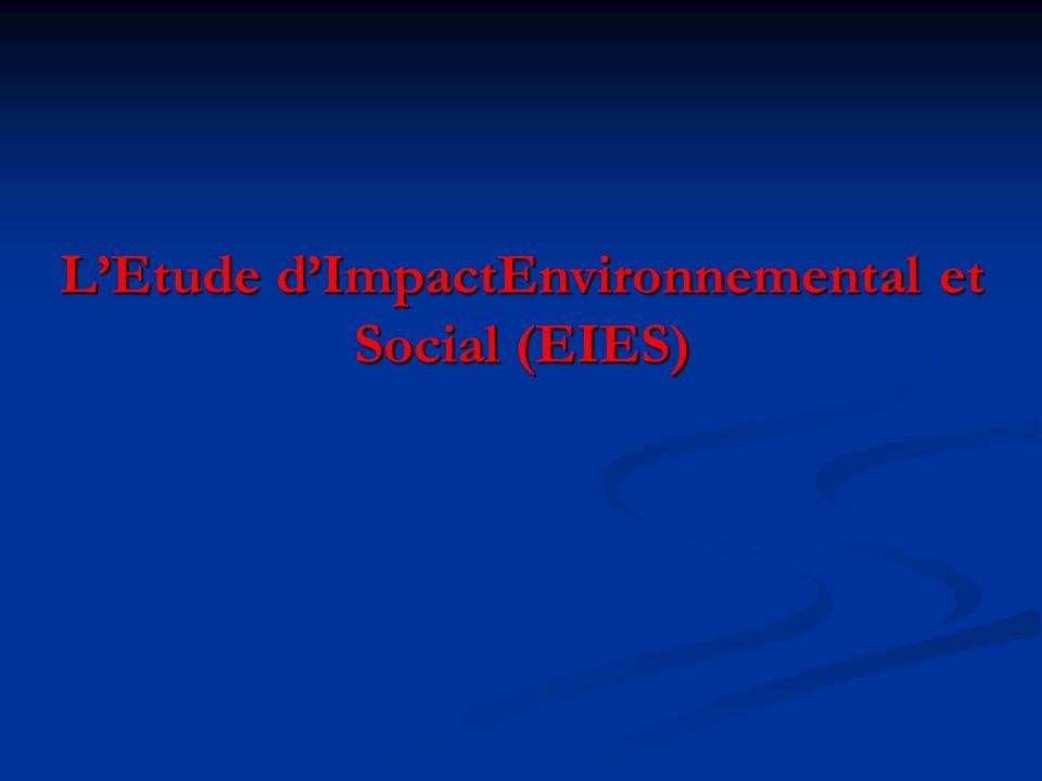 L'Etude d'ImpactEnvironnemental et Social (EIES)