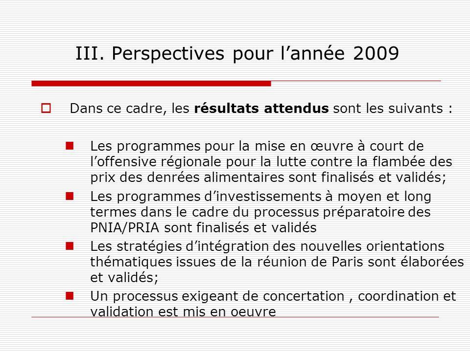 III. Perspectives pour l'année 2009