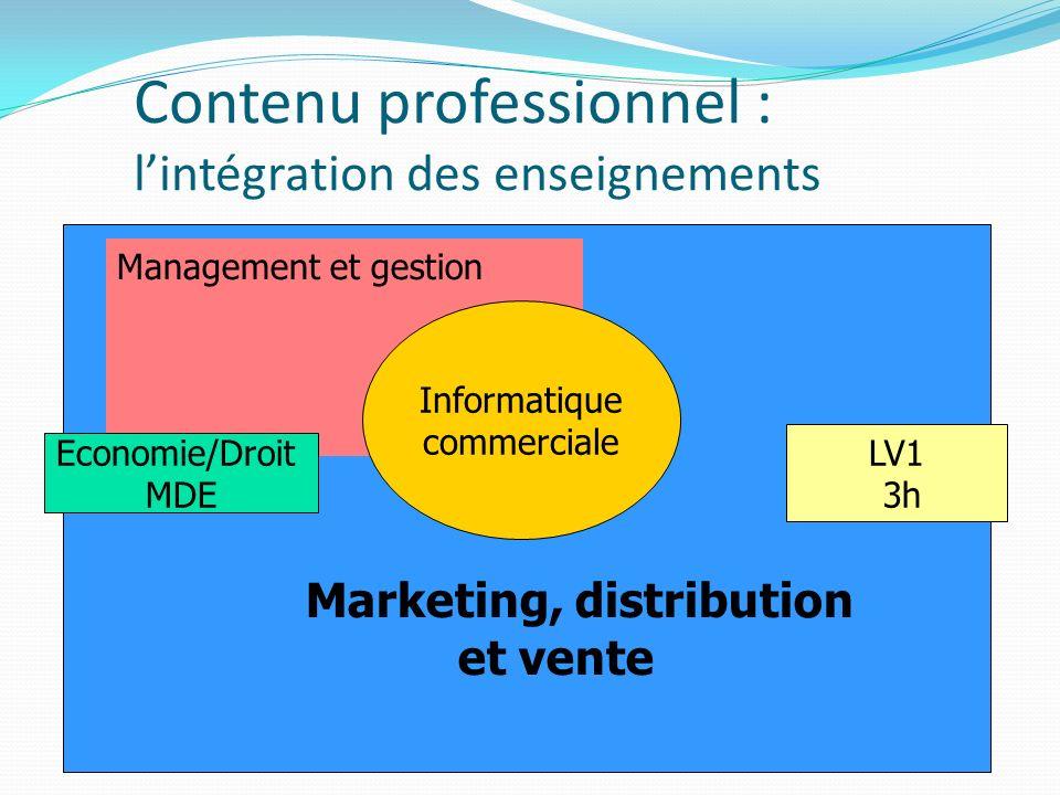 Contenu professionnel : l'intégration des enseignements