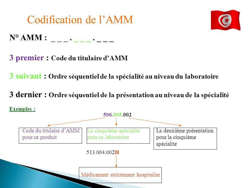 Codification de l'AMM N° AMM : _ _ _ . _ _ _ . _ _ _