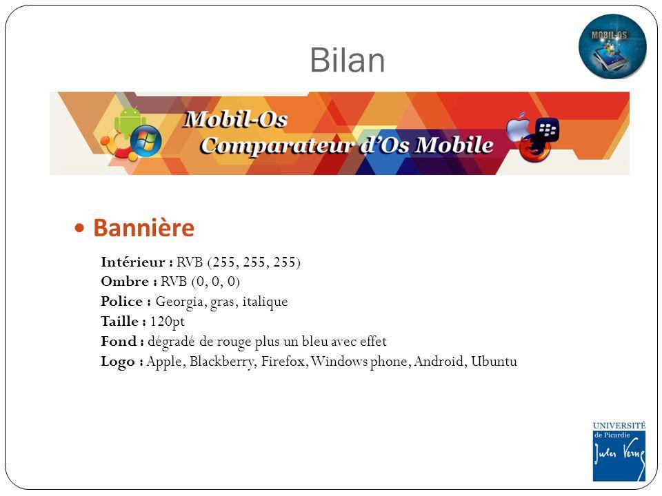 Bilan Bannière Intérieur : RVB (255, 255, 255) Ombre : RVB (0, 0, 0)