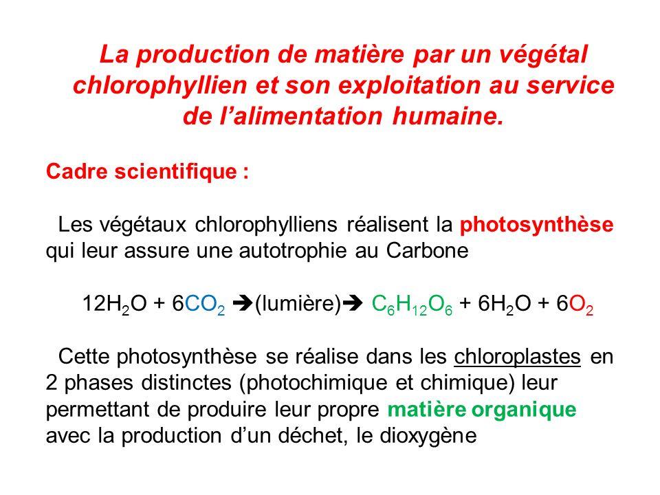 12H2O + 6CO2 (lumière) C6H12O6 + 6H2O + 6O2