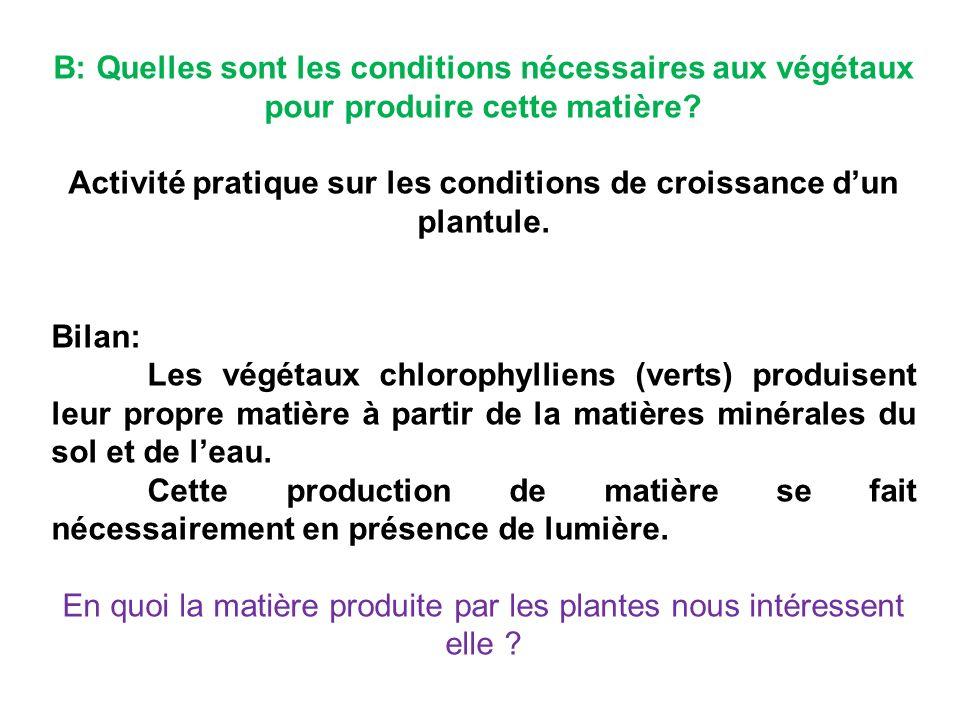 Activité pratique sur les conditions de croissance d'un plantule.