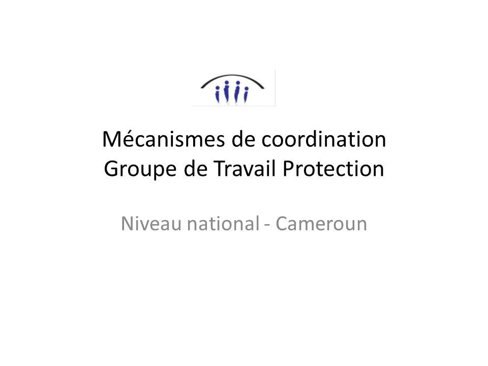 Mécanismes de coordination Groupe de Travail Protection