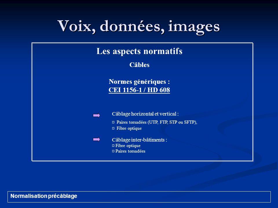 Voix, données, images Les aspects normatifs Câbles Normes génériques :