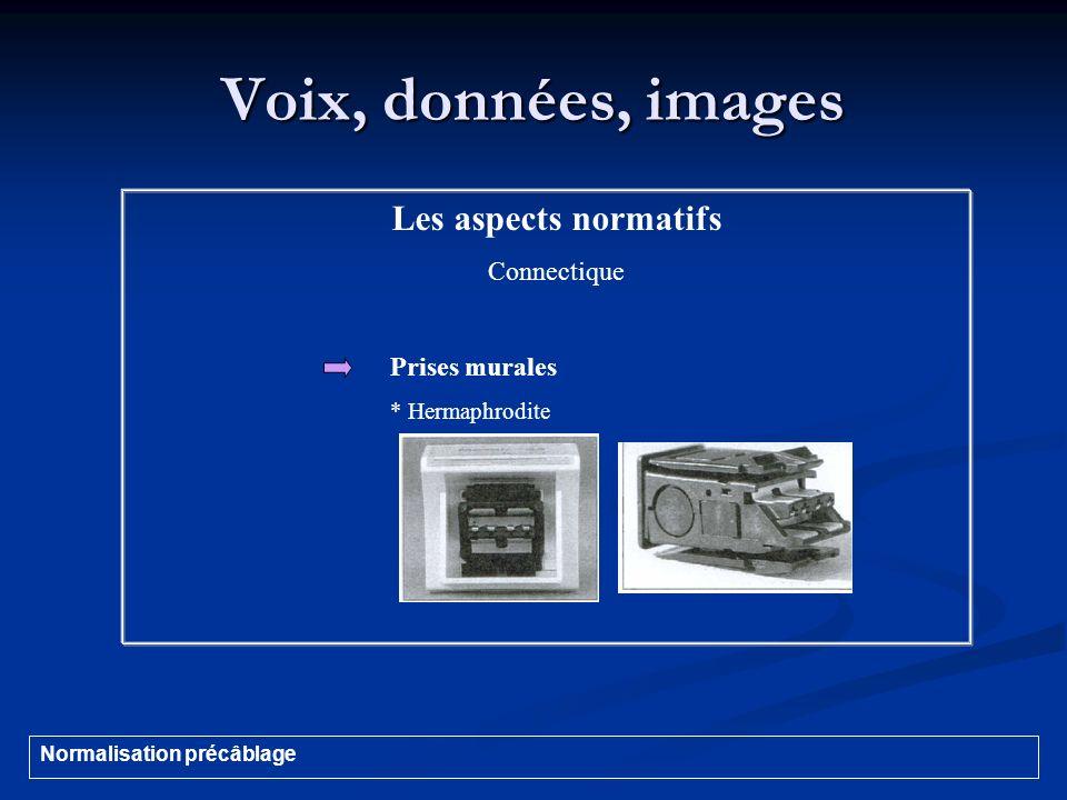 Voix, données, images Les aspects normatifs Connectique Prises murales