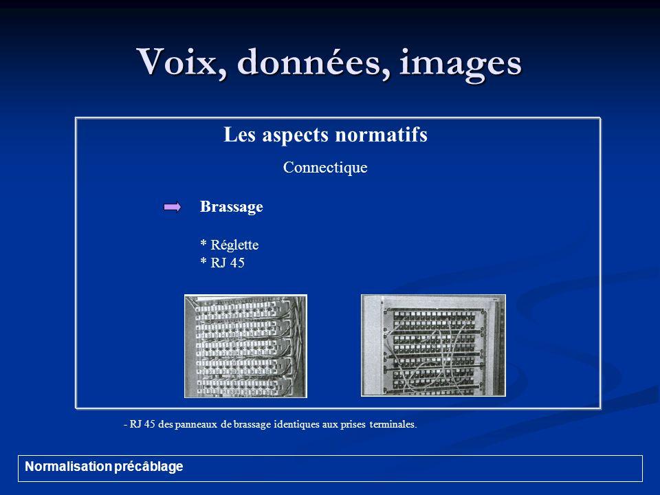 Voix, données, images Les aspects normatifs Connectique Brassage