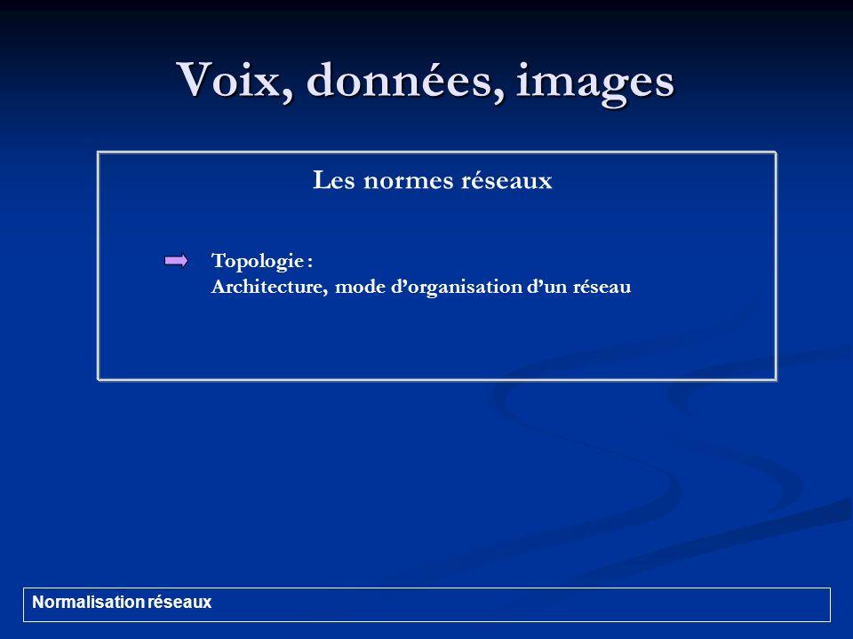 Voix, données, images Les normes réseaux Topologie :