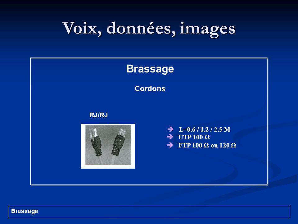 Voix, données, images Brassage Cordons RJ/RJ  L=0.6 / 1.2 / 2.5 M