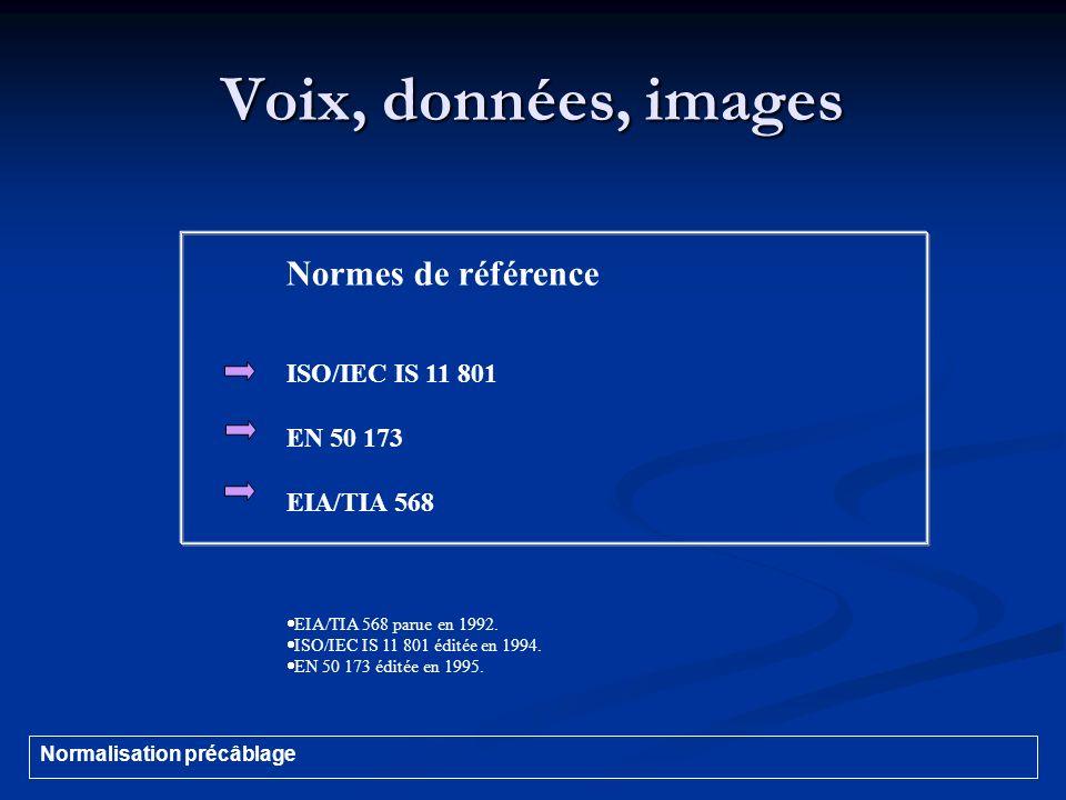 Voix, données, images Normes de référence ISO/IEC IS 11 801 EN 50 173