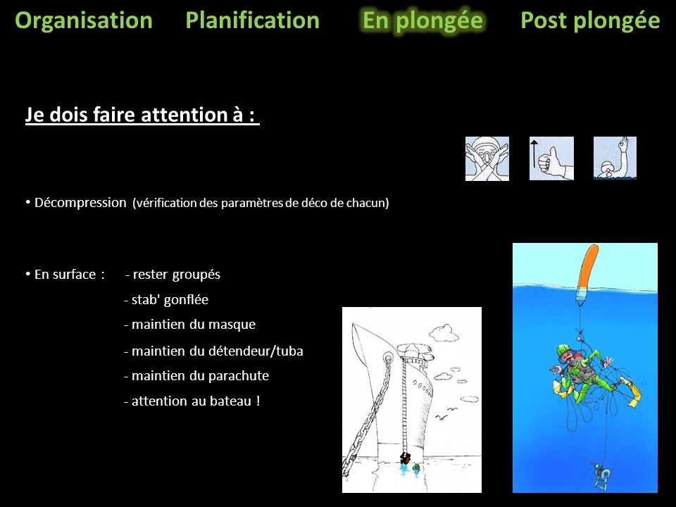 Organisation Planification En plongée Post plongée