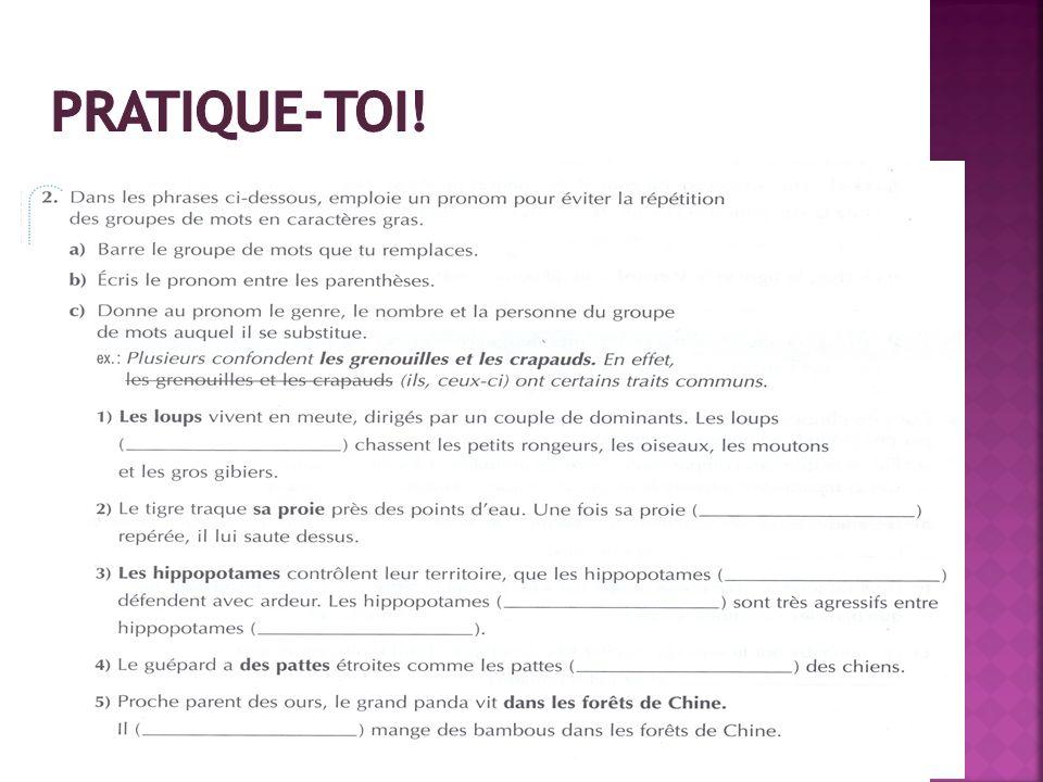 Pratique-toi! LE GUIDE grammatical au secondaire, Éditions Grand Duc, p.23 (livre orange)