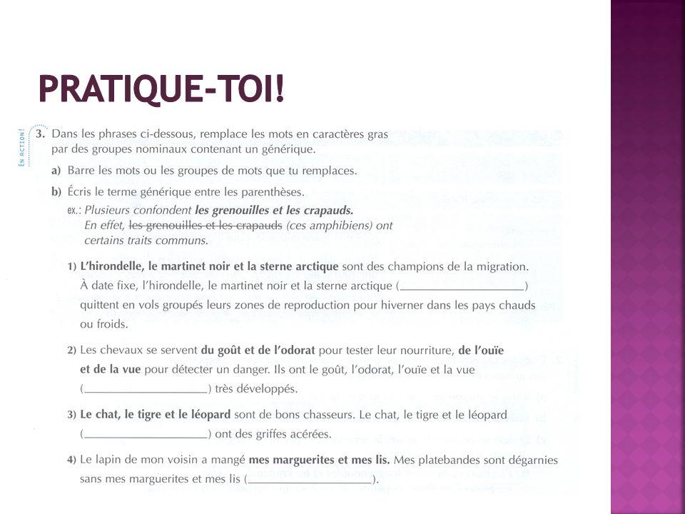 Pratique-toi! LE GUIDE grammatical au secondaire, Éditions Grand Duc, p.24 (livre orange)