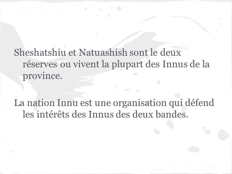 Sheshatshiu et Natuashish sont le deux réserves ou vivent la plupart des Innus de la province.