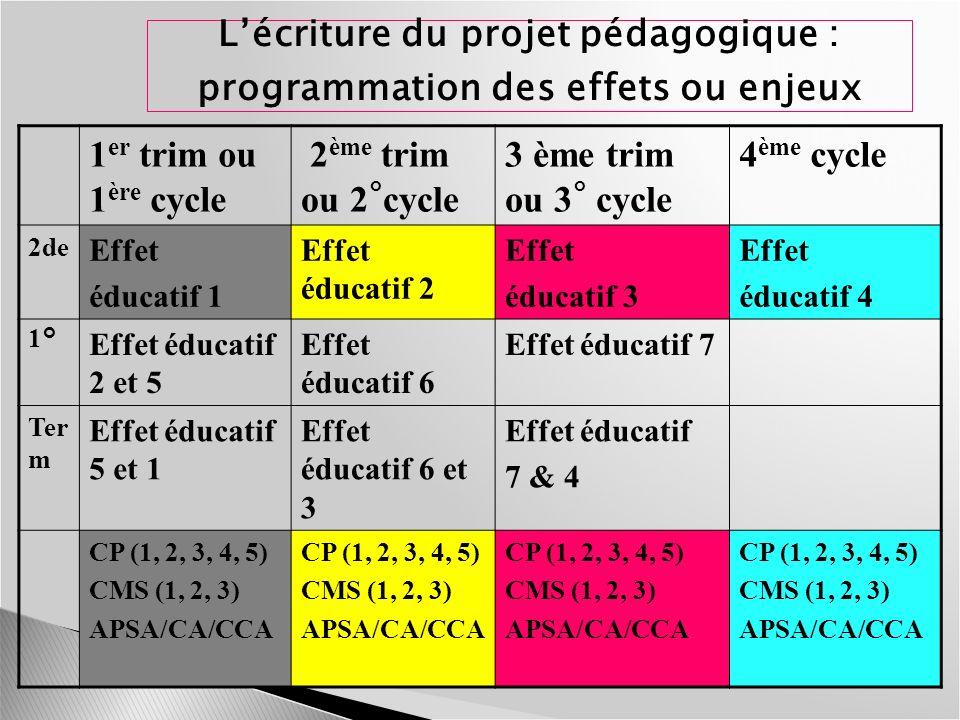 L'écriture du projet pédagogique : programmation des effets ou enjeux