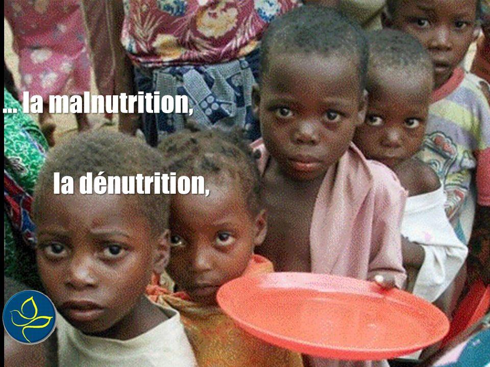 … la malnutrition, la dénutrition,