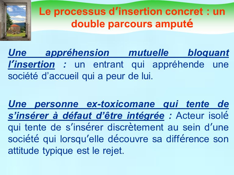 Le processus d'insertion concret : un double parcours amputé