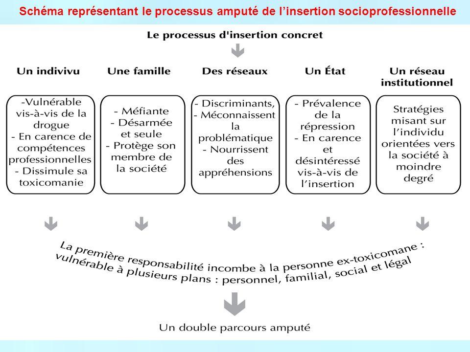 Schéma représentant le processus amputé de l'insertion socioprofessionnelle