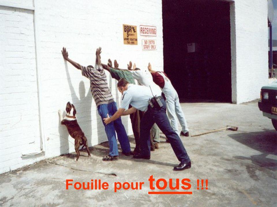 Fouille pour tous !!!