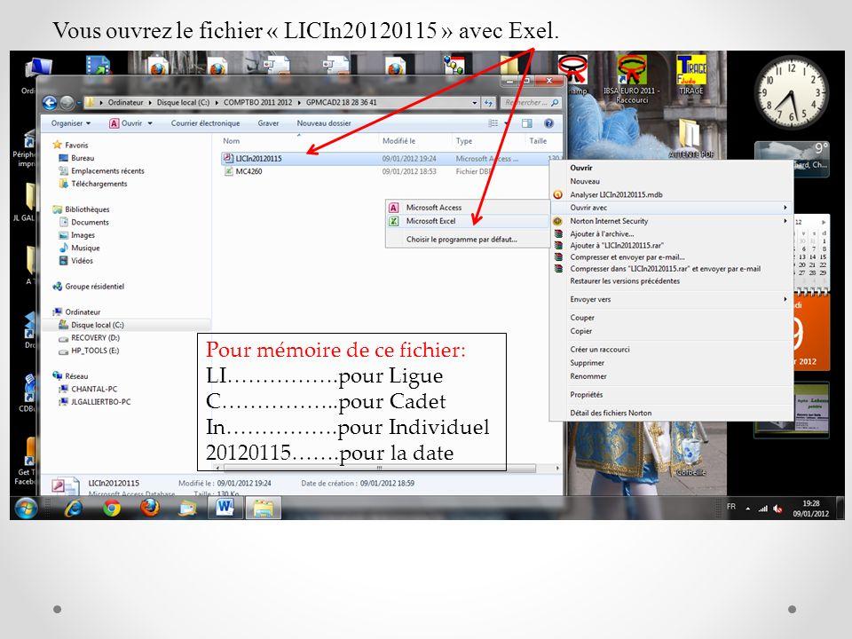 Vous ouvrez le fichier « LICIn20120115 » avec Exel.