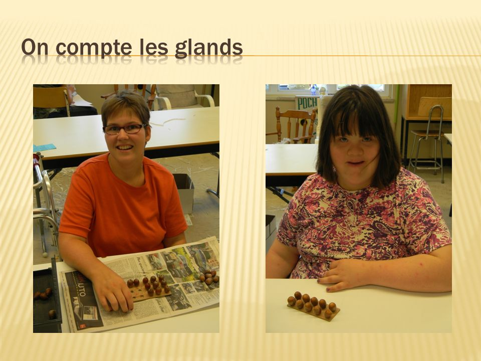 On compte les glands