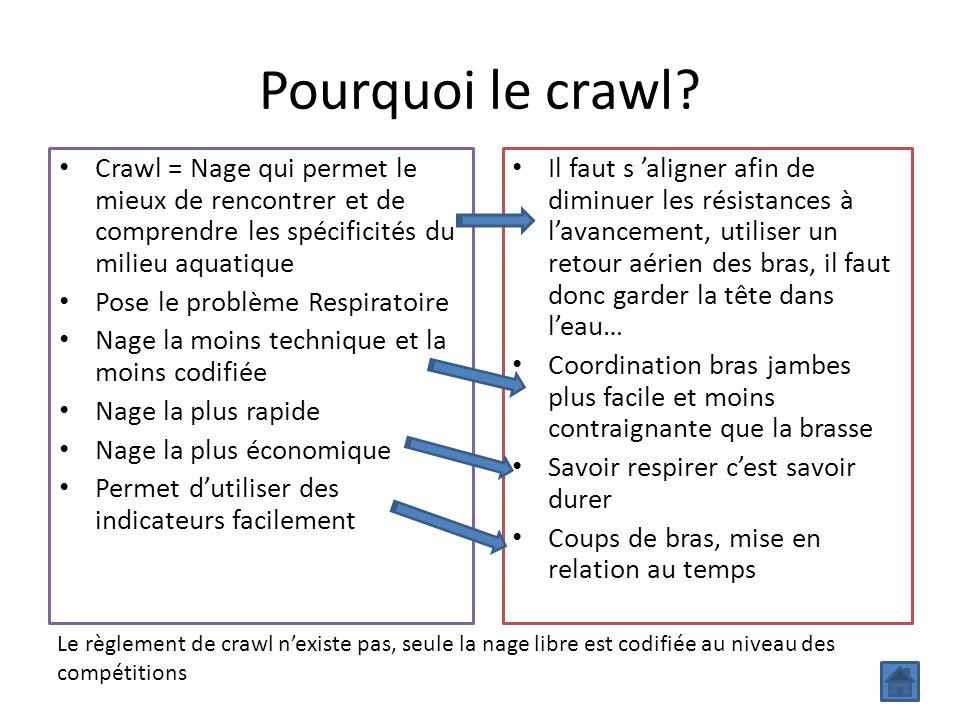 Pourquoi le crawl Crawl = Nage qui permet le mieux de rencontrer et de comprendre les spécificités du milieu aquatique.