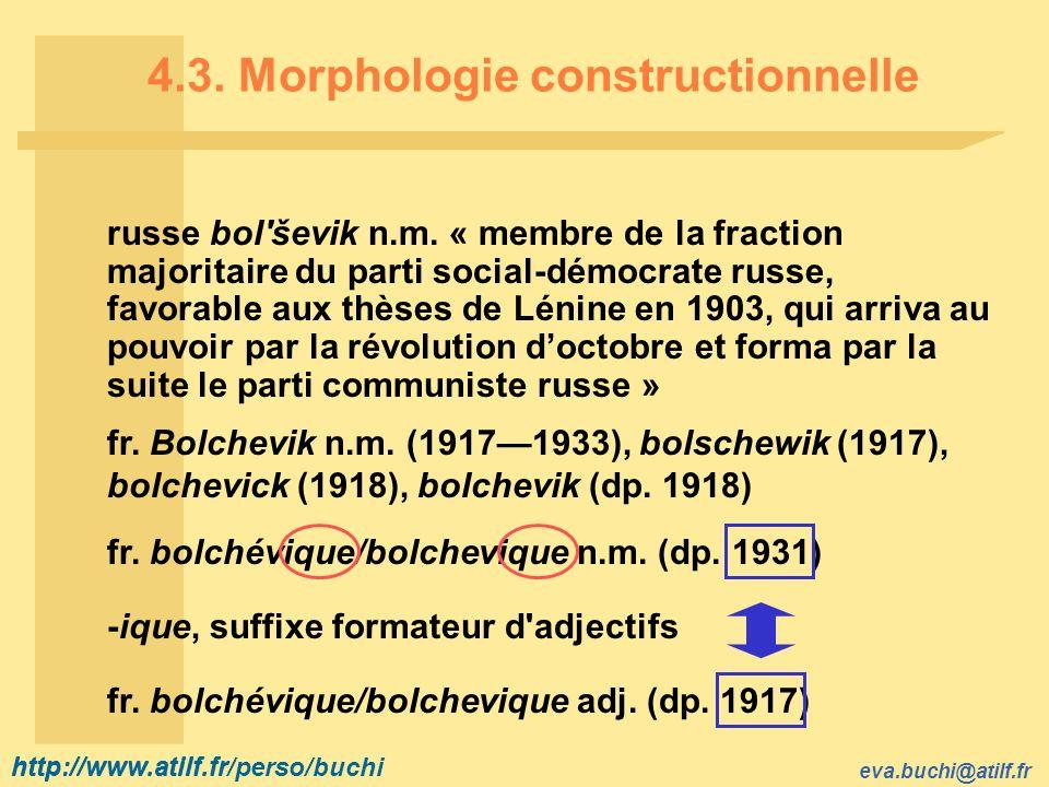 4.3. Morphologie constructionnelle