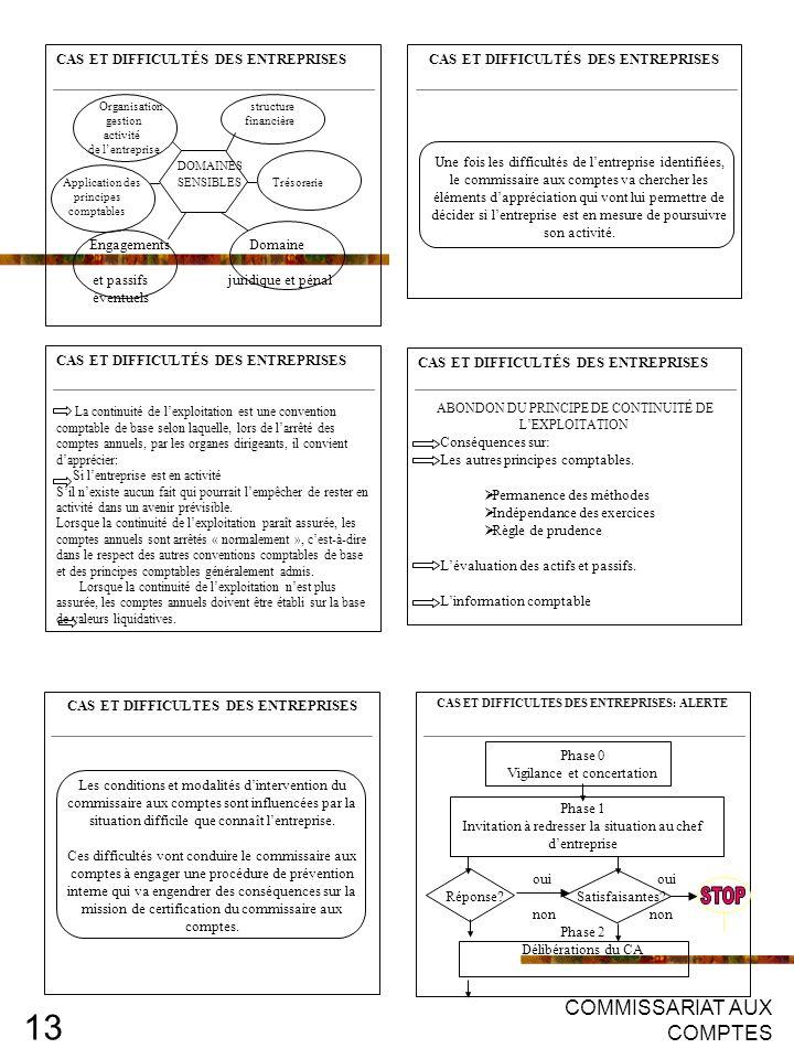 STOP COMMISSARIAT AUX COMPTES CAS ET DIFFICULTÉS DES ENTREPRISES