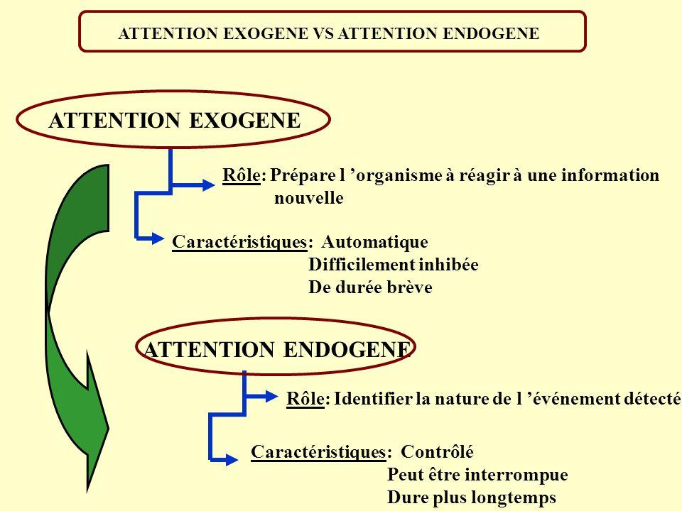 ATTENTION EXOGENE ATTENTION ENDOGENE