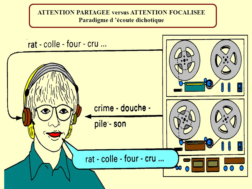 ATTENTION PARTAGEE versus ATTENTION FOCALISEE