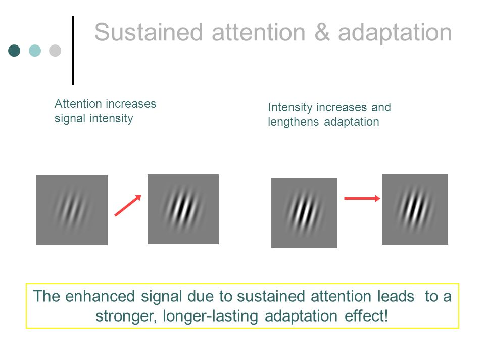 Sustained attention & adaptation