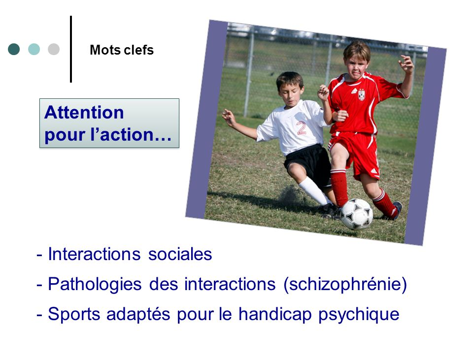 Interactions sociales Pathologies des interactions (schizophrénie)