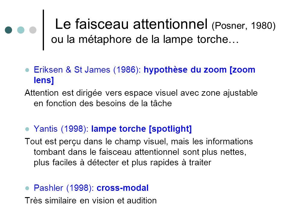 Le faisceau attentionnel (Posner, 1980) ou la métaphore de la lampe torche…