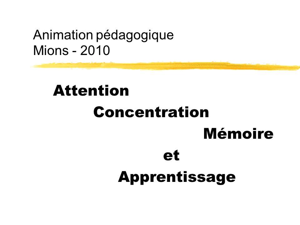 Animation pédagogique Mions - 2010