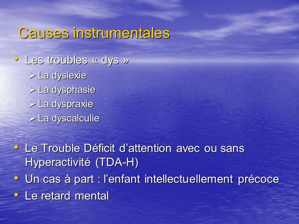 Causes instrumentales