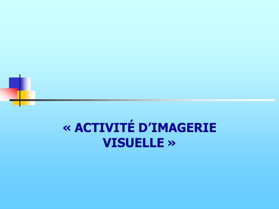 « ACTIVITÉ D'IMAGERIE VISUELLE »